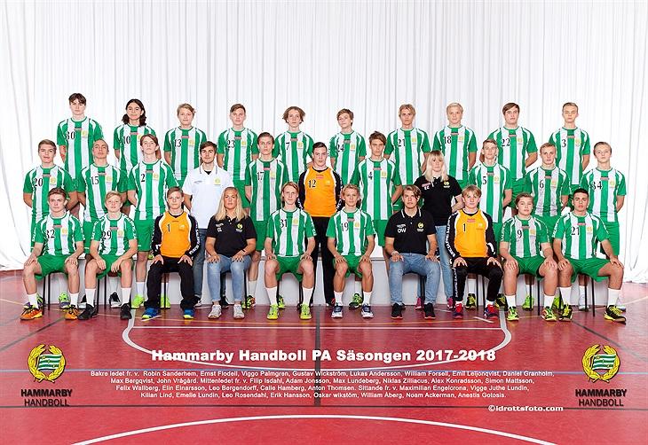 Hammarby till elithandbollen