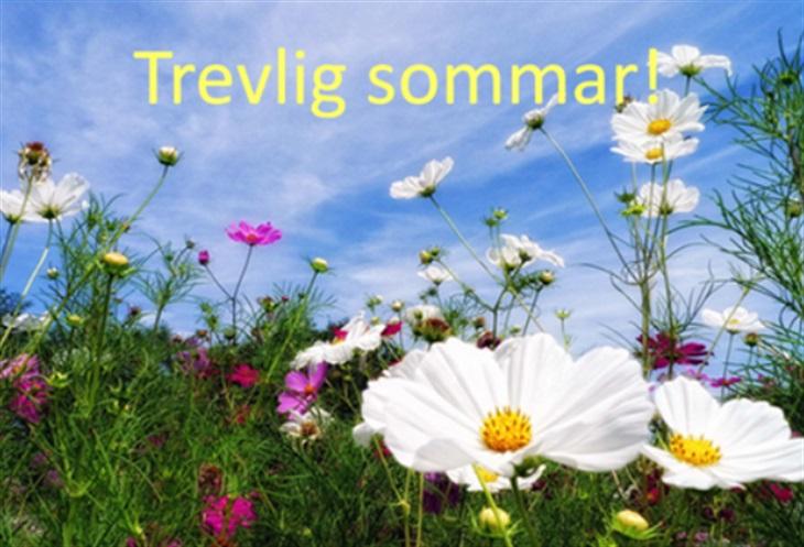 Trevlig sommar / Häcken BK - Bowling - Svenskalag.se